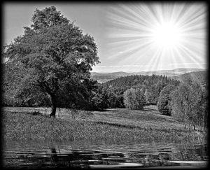 Пейзажи — оформление обратной стороны стелы